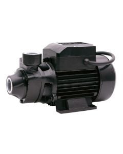 SIP EP2M clean water surface mounted pump